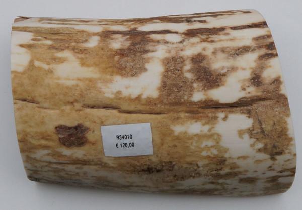 Außenschale vom Mammutstoßzahn
